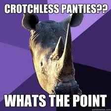 Panties Meme - crotchless panties whats the point sexually oblivious rhino