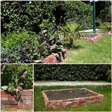 recycled brick raised vegetable garden bed small glamorous excerpt
