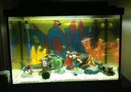 aquarium decorations fish tank singular fish tank items picture ideas aquarium