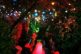 Rock City Garden Of Lights Photo Gallery Rock City S Enchanted Garden Of Lights