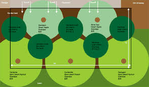 Fruit Tree Garden Layout Fruit Tree Guild Plans Eat To Home