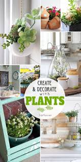 create and decorate with plants tidymom