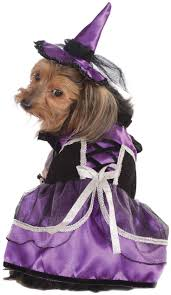 82 best happy howl o ween images on pinterest pet costumes