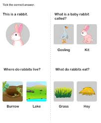 learn about farm animals and their homes learn about rabbits
