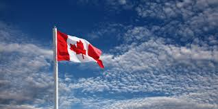 Giant Canadian Flag Salespro Domains Google
