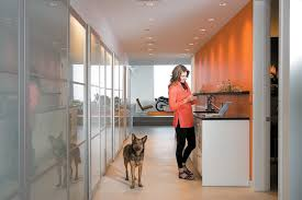 frosted glass kitchen cabinets ikea designing for privacy 14 discreet uses for frosted glass by