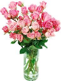 wedding flowers png spray roses wholesale wedding flowers