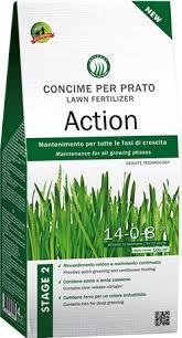 concimazione tappeto erboso concime granulare per prato da mantenimento a lunga durata