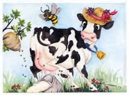 cow greeting cards cow cards