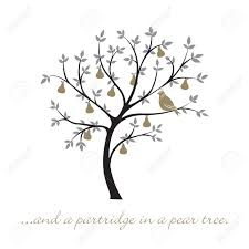 a partridge in a pear tree christmas card royalty free cliparts