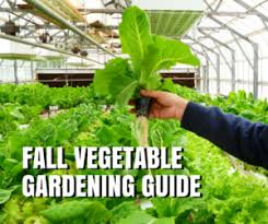 fall vegetable gardening guide for texas