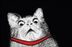Shock Meme - shock cat blank template imgflip