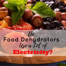 electricit cuisine do dehydrators use a lot of electricity