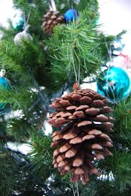 a christmas special e2 80 93 natural decorations for your tree