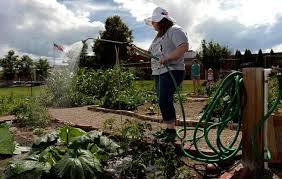 Urban Garden Denver - lone tree to get first community garden u2013 the denver post