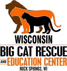 Wisconsin wildlife tours images Home wisconsin big cats jpg