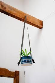 76 Best 1 Garden Hanging Plant Images On Pinterest Hanging