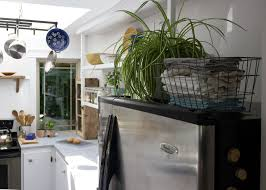 plants for on top of kitchen cabinets how to maximize that awkward space above the fridge