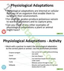 plant and animal adaptations resource collection u2013 teach starter