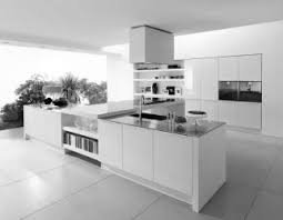 Contemporary White Kitchen Designs D Licieux Modern White Kitchen Cabinets Kitchens Design Ideas Sink