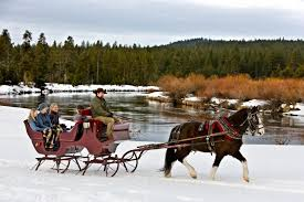 the winter carriage ride in oregon that s magic
