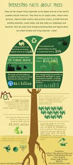 interesting facts about trees visual ly