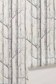top 25 best birch tree wallpaper ideas on pinterest tree 10 excellent sources for buying birch tree wallpaper