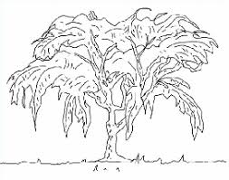 drawing nature and landscapes how to draw nature outdoors with