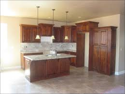 elegant under cabinet kitchen lighting options taste
