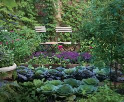 Backyard Vegetable Gardening by Beautiful Backyard Vegetable Gardens Decorating Clear