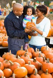 pumpkin picking tips u2013 how to pick a pumpkin for halloween