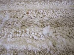 How To Clean Shag Rug Rug Master Shag Rugs And Professional Cleaning