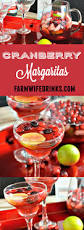 jose cuervo mango margarita cranberry margaritas the farmwife drinks