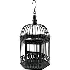 Decorative Bird Cages Wholesale Best 25 Bird Cages For Sale Ideas On Pinterest Diy Crafts Out