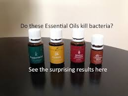 do essential oils like thieves really kill germs stop the