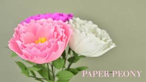 Peony Flowers Crepe Paper Peony Flower Tutorial With Template Creative Diy