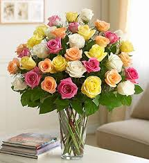 multi colored roses dill s ultimate stemmed multi colored 36 bouquet
