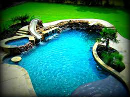 Backyard Fort Worth - freeform swimming pool examples by dallas fort worth swimming pool