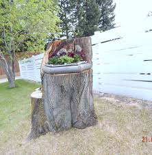 tree stump planters hiawatha house the linden tree