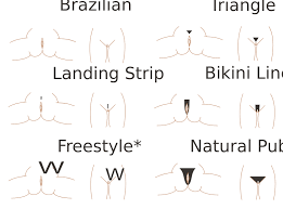 pubic hairs pics file pubic hair styles svg wikimedia commons