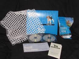 american eskimo dog giving birth contact us
