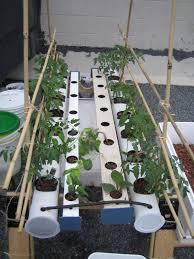 solar hydroponics hydroponics wiki fandom powered by wikia
