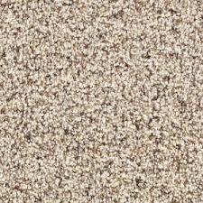 martha stewart living fontainebleau color hickory 12 ft carpet