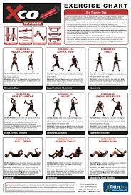 best 25 dumbbell workout program ideas on pinterest ripped
