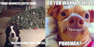 Christmas Dog Meme - dogtube