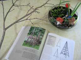 how to make a mini terrarium trellis out of sticks inspired by the