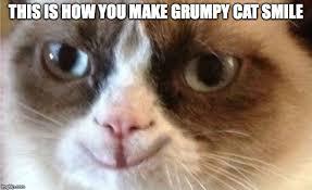 Create A Grumpy Cat Meme - grumpy cat happy imgflip