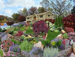 alarming frontyard with lush rock garden ideas with small plants
