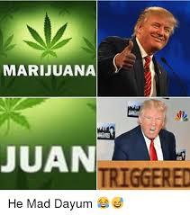 He Mad Meme - marijuana juan triggered he mad dayum meme on me me