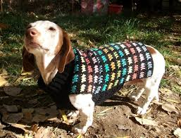 crochet pattern for dog coat stained glass crochet dog sweater small dog coats dachshunds and pdf